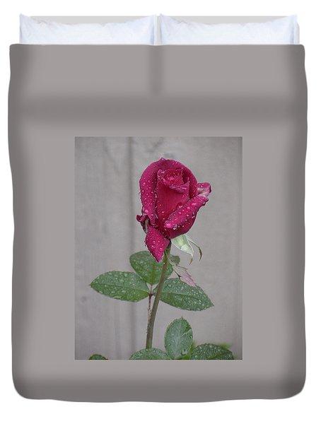 Red Rose In Rain Duvet Cover