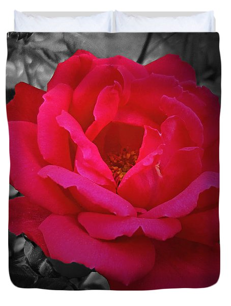 Red Rose On Black And White Duvet Cover