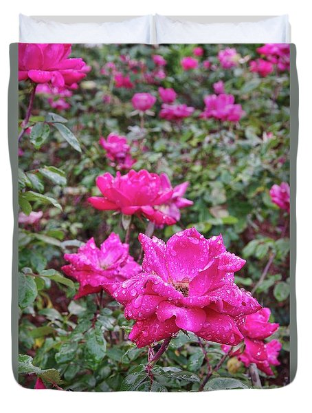 Red Rose Plants II Duvet Cover by Richard Rizzo