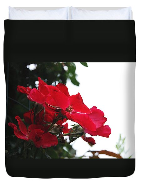 Red Roses Trio Duvet Cover