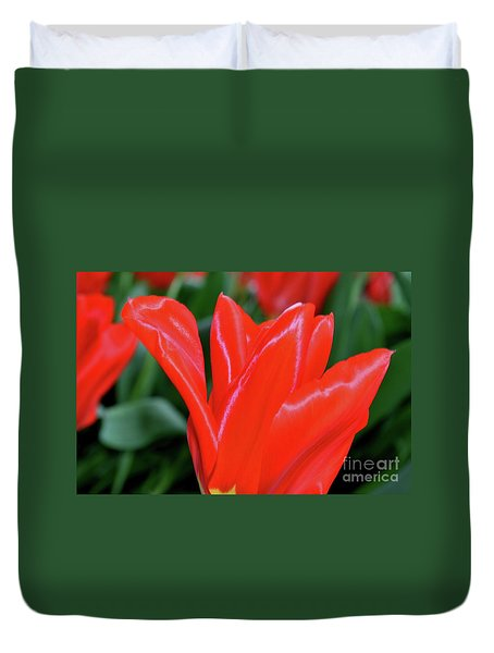 Red Satin Duvet Cover