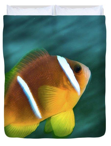 Red Sea Clownfish  Duvet Cover by Hagai Nativ