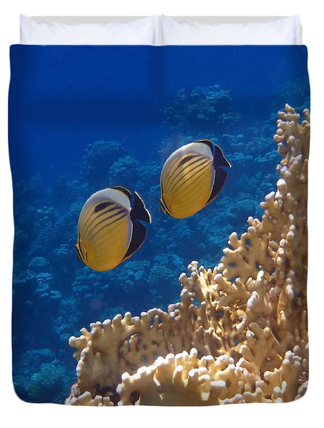 Red Sea Exquisite Butterflyfish  Duvet Cover