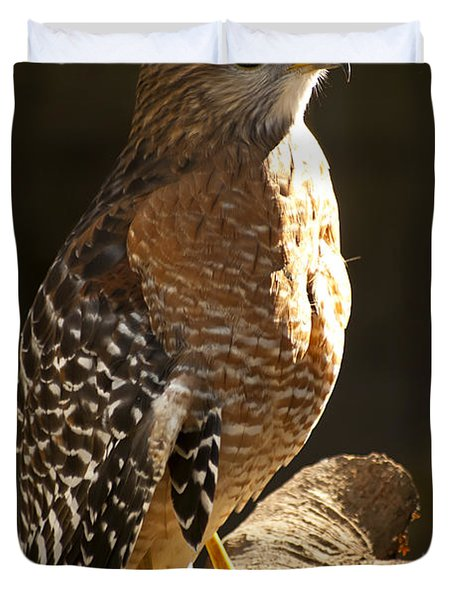 Duvet Cover featuring the photograph Red-shouldered Hawk by Carolyn Marshall