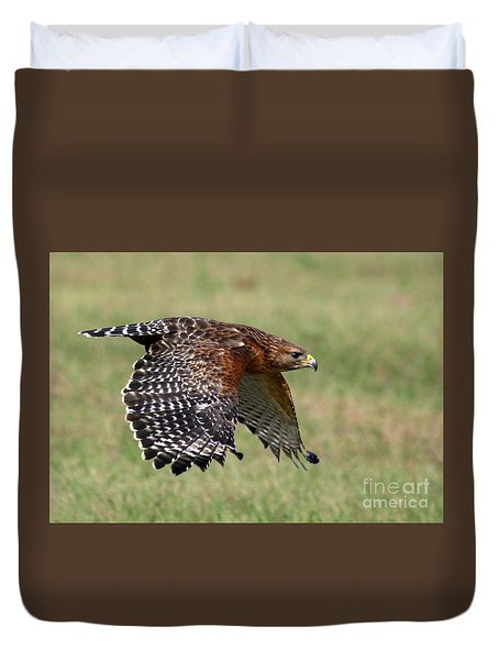 Red-shouldered Hawk Flight Duvet Cover by Myrna Bradshaw
