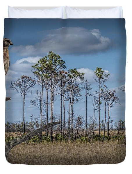 Red Shouldered Hawk In The Florida Everglades Duvet Cover