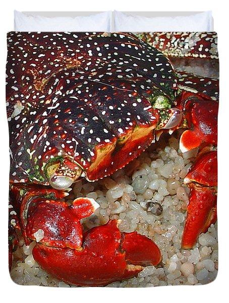 Red Spotted Crab Duvet Cover by Karon Melillo DeVega