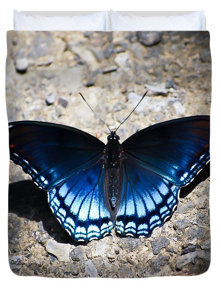 Red-spotted Purple Butterfly Duvet Cover