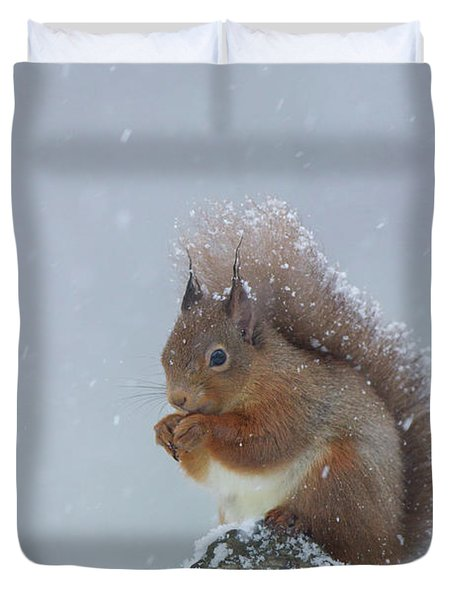Red Squirrel In A Blizzard Duvet Cover