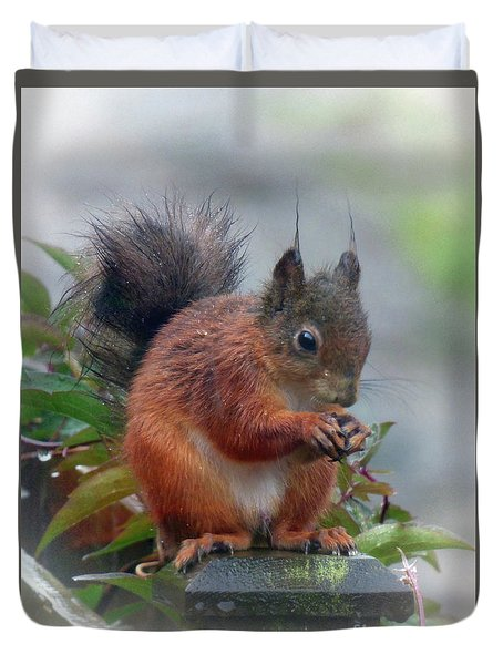 Red Squirrel In The Rain Duvet Cover