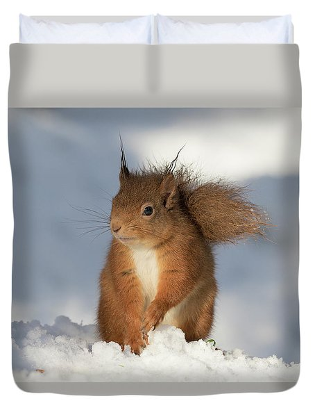 Red Squirrel In The Snow Duvet Cover