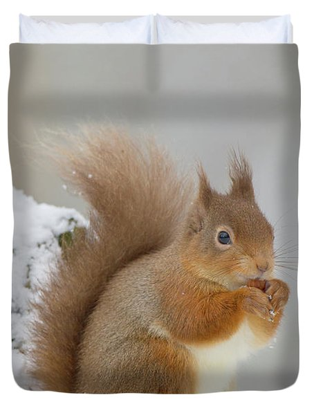 Red Squirrel In The Snow Side On Duvet Cover