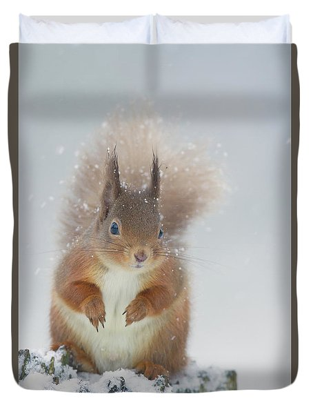 Red Squirrel In Winter Duvet Cover