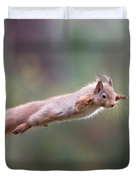 Red Squirrel Leaping Duvet Cover