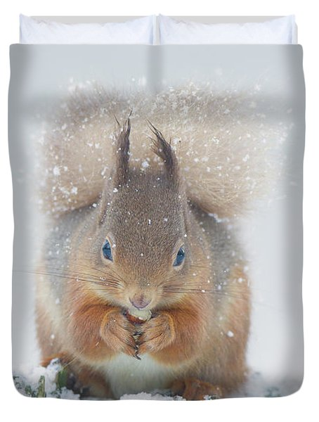 Red Squirrel Nibbles A Nut In The Snow Duvet Cover