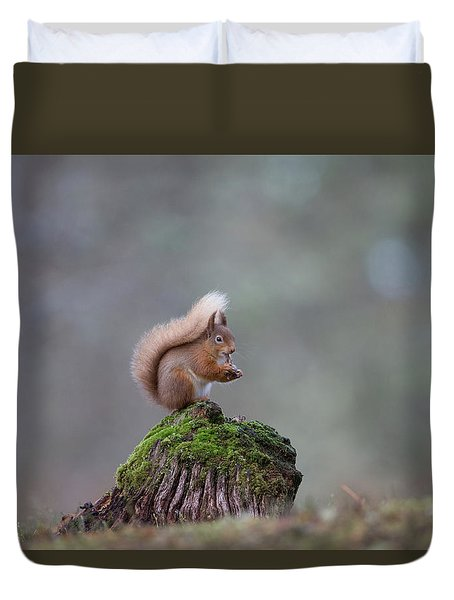 Red Squirrel Peeling A Hazelnut Duvet Cover