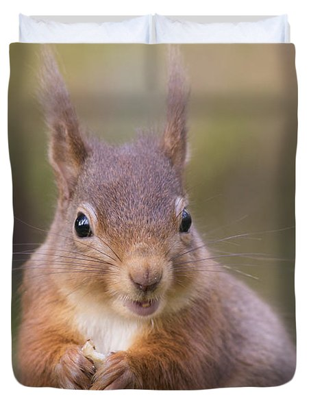 Red Squirrel - Scottish Highlands #18 Duvet Cover