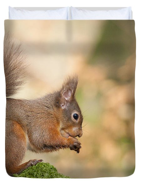 A Moment Of Meditation - Red Squirrel #27 Duvet Cover