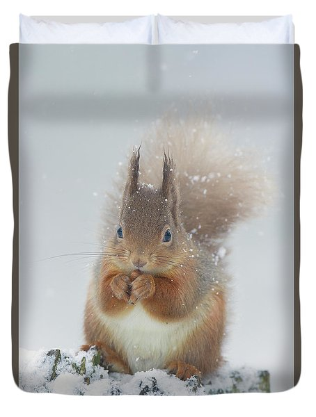 Red Squirrel With Snowflakes Duvet Cover