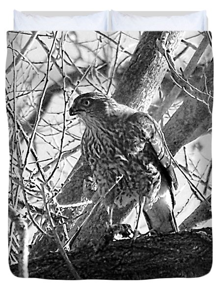 Red Tail Hawk In Black And White Duvet Cover