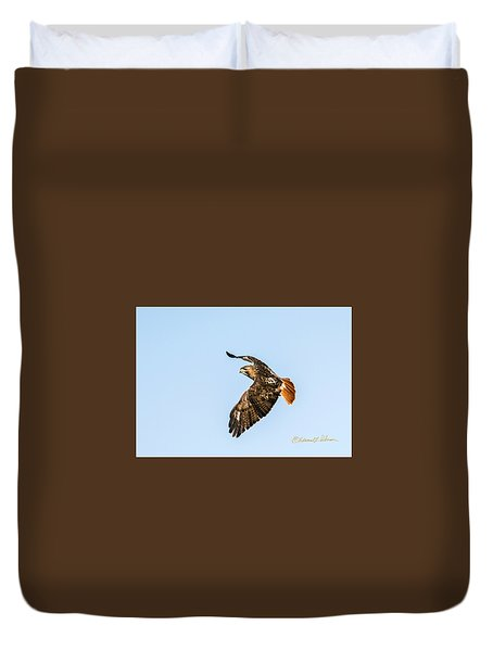 Red-tail Hawk In Flight Duvet Cover