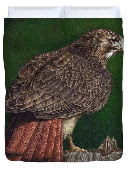 Red Tail Hawk Duvet Cover by Pat Erickson