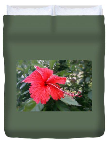 Red-tailed Flower Portrait Duvet Cover