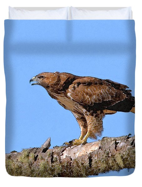 Red-tailed Hawk Duvet Cover by Betty LaRue
