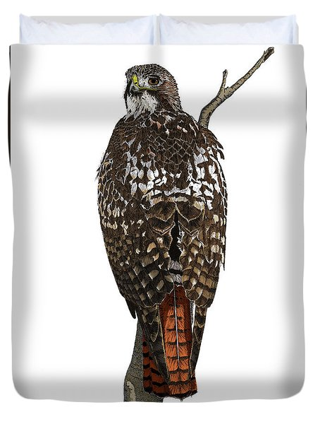 Red-tailed Hawk - Color Duvet Cover