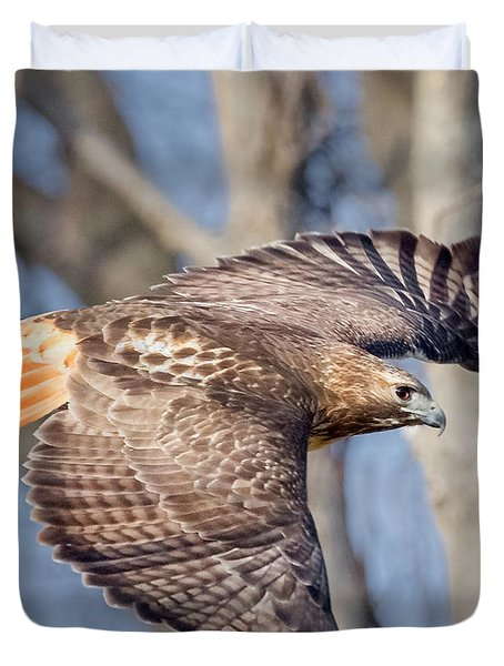 Duvet Cover featuring the photograph Red Tailed Hawk Flying by Bill Wakeley