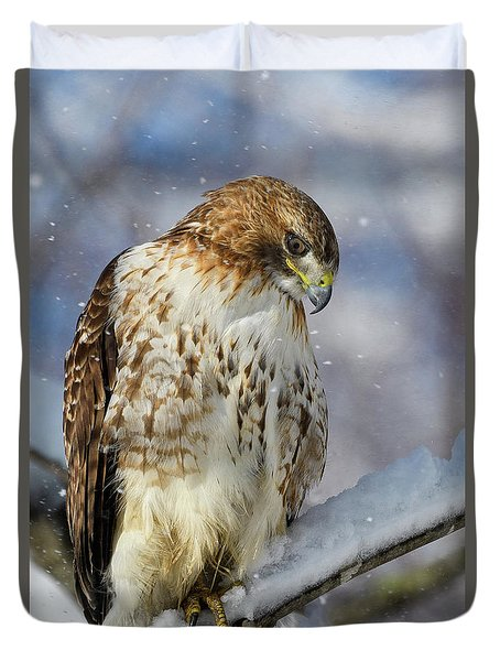 Red Tailed Hawk, Glamour Pose Duvet Cover