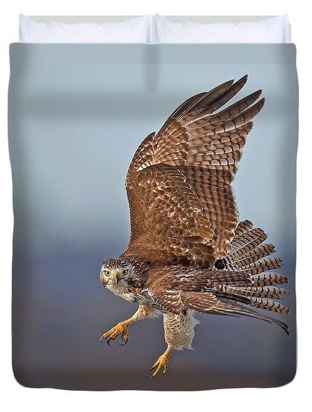 Red-tailed Hawk In Flight Duvet Cover