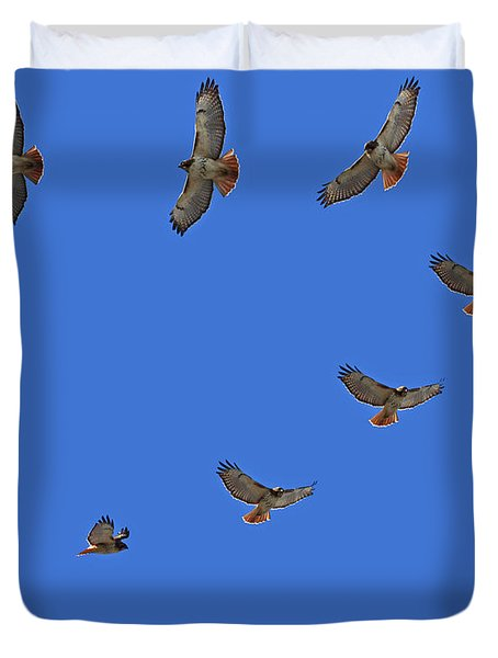 Red Tailed Hawk In Flight Duvet Cover