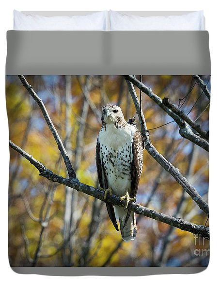 Duvet Cover featuring the photograph Red-tailed Hawk In The Fall by Ricky L Jones