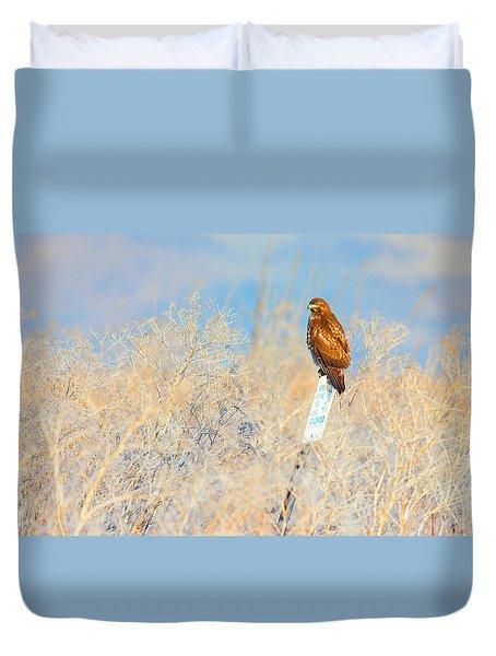 Red-tailed Hawk - Lower Klamath Tule Lake California Duvet Cover