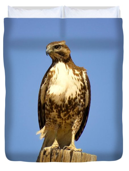 Red-tailed Hawk On Post Duvet Cover