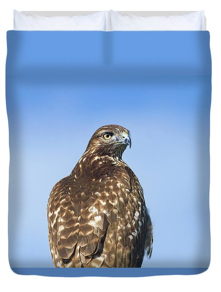 Red-tailed Hawk Perched Looking Back Over Shoulder Duvet Cover