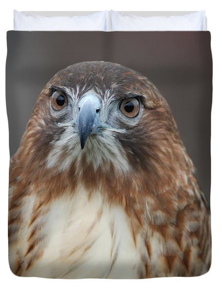 Duvet Cover featuring the photograph Red Tailed Hawk by Richard Bryce and Family