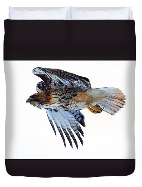 Red-tailed Hawk Winter Flight Duvet Cover by Mike Dawson