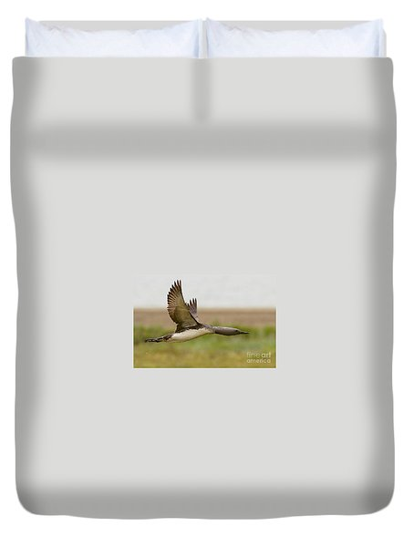 Red-throated Loon In Flight Duvet Cover