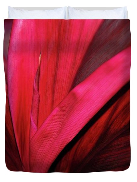 Red Ti Leaf Plant - Hawaii Duvet Cover