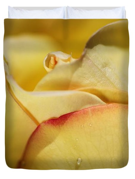 Red Tipped Yellow Rose Duvet Cover by Joy Watson