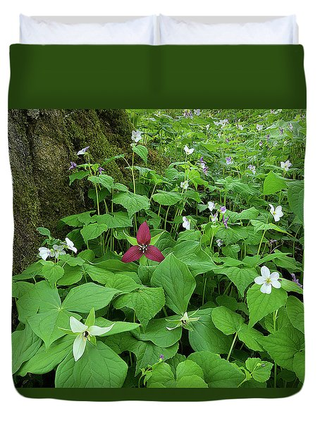 Red Trillium At Center Duvet Cover