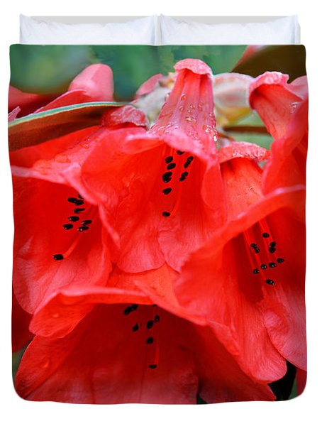 Red Trumpet Rhodies Duvet Cover