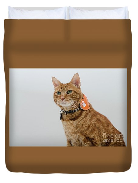 Red Tubby Cat Tabasco Pet Duvet Cover
