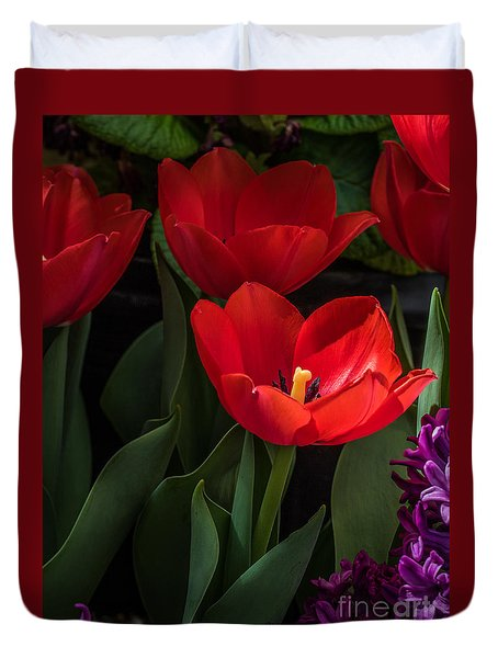 Duvet Cover featuring the photograph Red Tulip by Darleen Stry