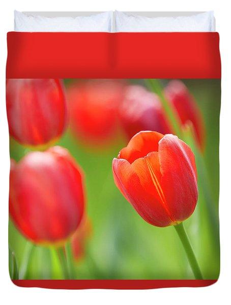 Red Tulip Duvet Cover