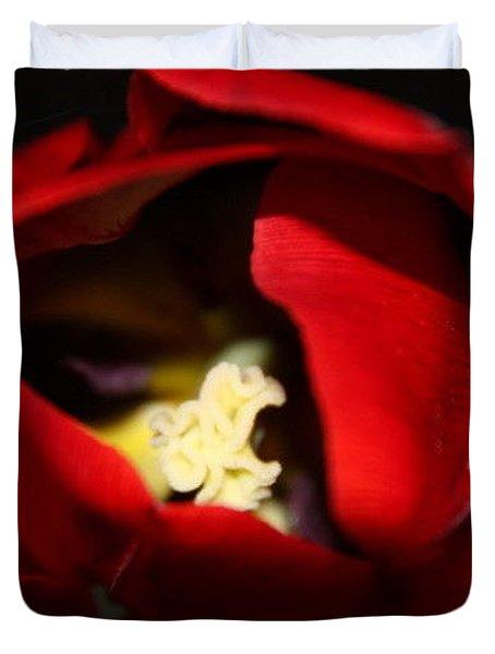 Duvet Cover featuring the photograph Red Tulip by Jolanta Anna Karolska