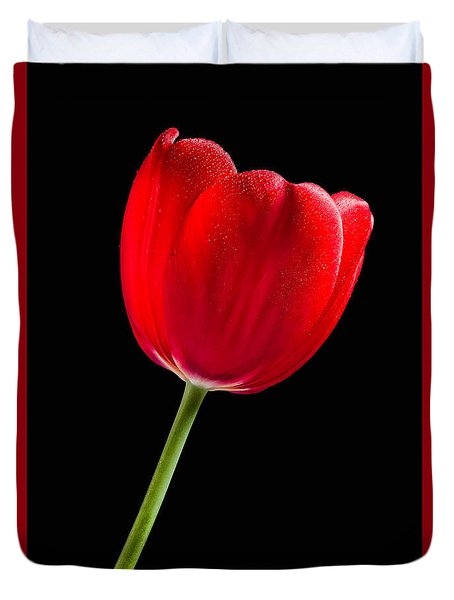 Red Tulip No. 1  - By Flower Photographer David Perry Lawrence Duvet Cover