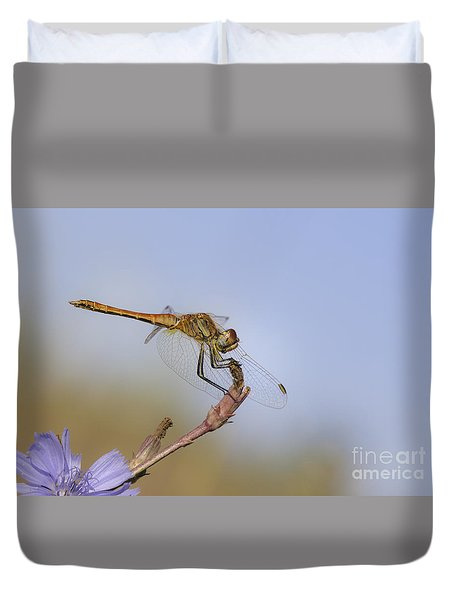 Duvet Cover featuring the photograph Red Veined Darter Dragonfly by Jivko Nakev